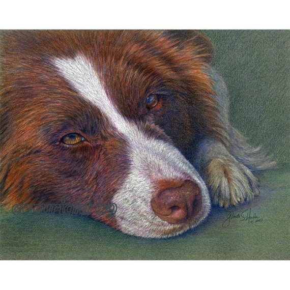 Border Collie Fine Art  Note Cards - Set of FOUR
