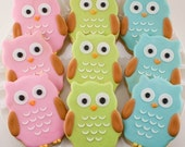 Owl Sugar Cookie Favors - (24 Favors, bagged and bowed)