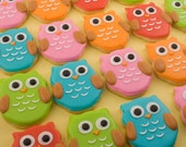 Owl Cookies, MINI SIZE baby owls - 2 dozen (individually bagged & bowed)