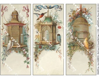 3 Birds and Cages-Elegant Antique Images on a Digital Collage Sheet Download - ABIRDS2