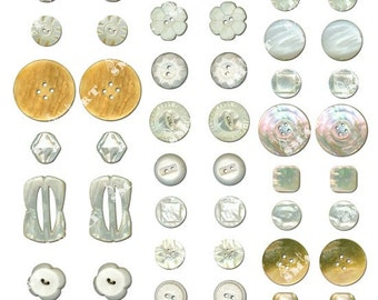 Buttons - 48 images of 24 different pairs of buttons on a Collage Sheet Digital Download - ABTNS1
