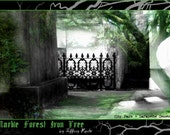 Marble Forest Iron Tree poster New Orleans Lafayette Cemetery City Park photo manip