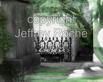 Marble Forest Iron Tree - 8 x 10 matted photo manipulation - City Park Lafayette Cemetery - New Orleans