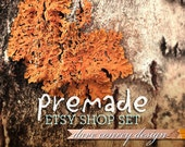 Premade Etsy Shop Set - Organic Theme with Plant Life in Warm Natural Tones - 070911