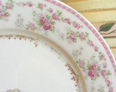 SHABBY COTTAGE CHARM - Vintage Porcelain Cabinet Plate - Petie Pink Roses - Made in Austria