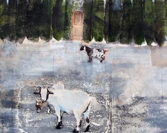 Goats, Art Print, Farm Animals, Farm Life, Nature Photography, Unique Fine Art, Wall Decor
