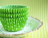 Lime Green Polka Dot liners (50)