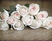 Spring Photography romantic nature rustic Ready to ship wedding roses photograph decor for her women light brown pink flowers shabby chic