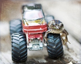 Animal Photography nature Humor dude frog men Fathers Day boy children kids funny fun humorous monster truck red black Art Photograph Print
