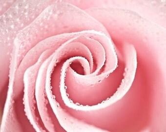 Macro Photography nature art romantic wall decor art Pink photo home decor Shabby Chic art spring love flower rose photograph Fine Art Print
