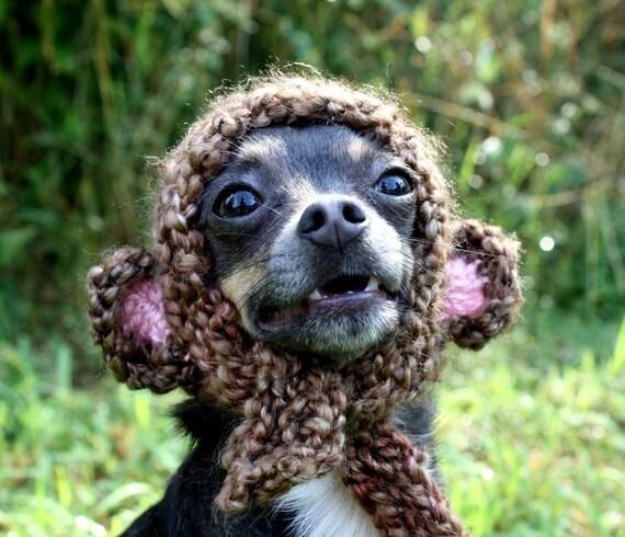 Monkey Pup Hat