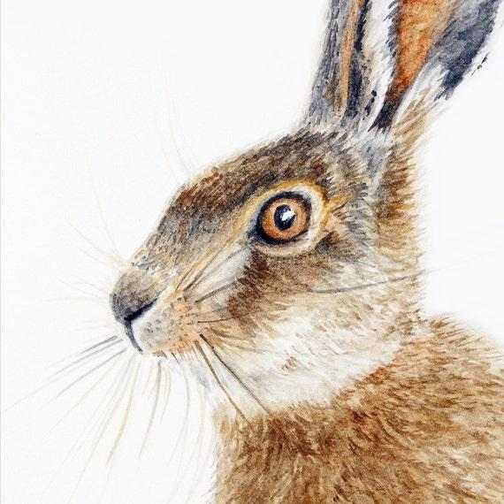 Brown Hare Leveret - original artwork in watercolour