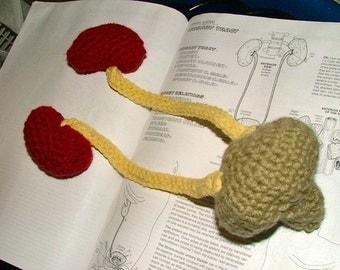 Pattern, Kidneys Crochet Plush with Ureters and Bladder