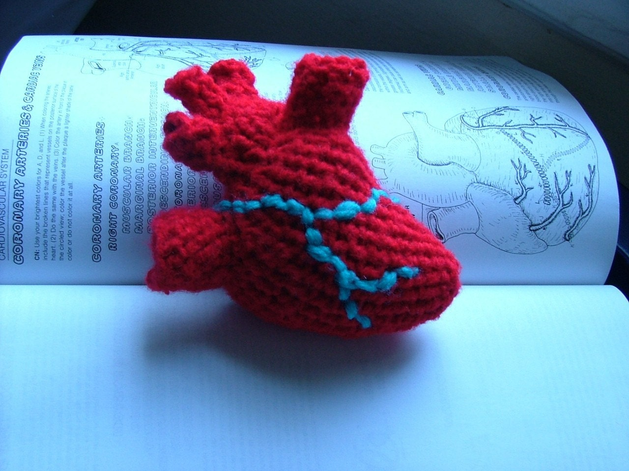 Anatomical Crochet Heart
