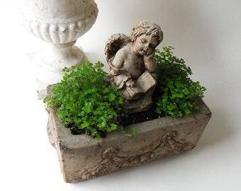 cement cherub planter - special order LOCAL pick up only
