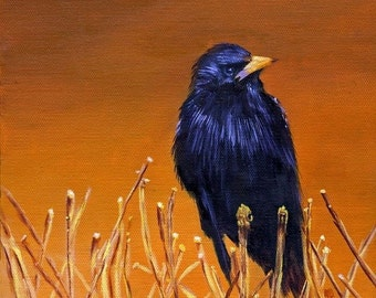 Black Bird Art Print Poster, Bird Print, Crow Print, Bird Art, Fine Art Print, Signed,