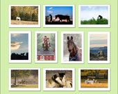 Mix and Match Collection of 10 - Press Printed 5x7 Note Cards