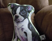 Boston Terrier Plushie Pillow Green outline--Made to order
