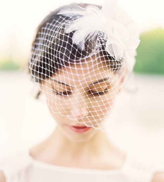 Lila Birdcage Veil with Swarovski Crystal and Feathers