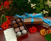 Garden Bon Bons - Edible Flowers