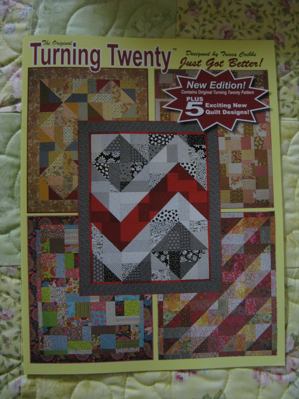 TURNING TWENTY JUST GOT BETTER QUILT PATTERN by donnasintheattic