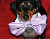 The Lavender  Bow Tie comes in 3 sizes small medium and large