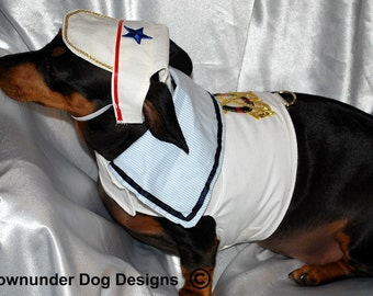 Sailor Boy 2 piece hat and Harness