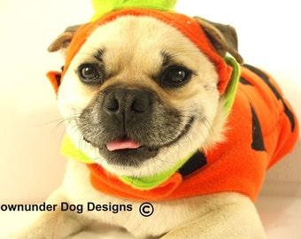 puggy pumpkin 2 piece outfit