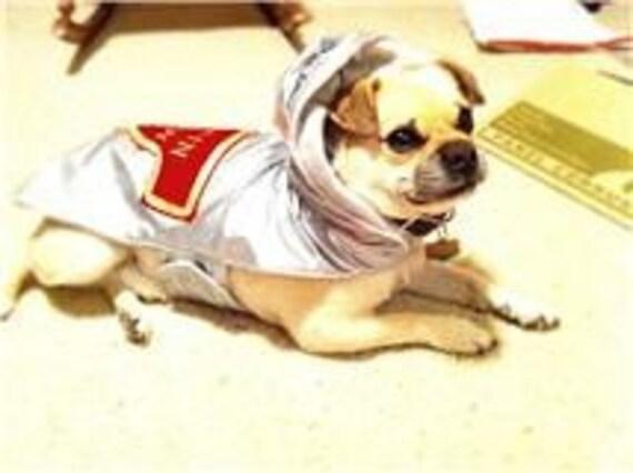 Space Dog Captian Buddy Costume