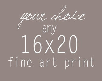Your Choice of any 16x20 Fine Art Photograph