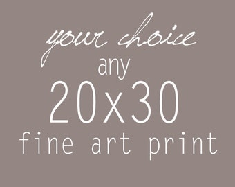 Your Choice of any 20x30 Fine Art Photograph