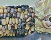 Indian Corn - print of original colored pencil drawing 5x7