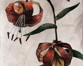 Tiger Lilies - print of original hand-colored solarplate etching 8x10