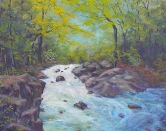 Blue Ridge Mountains Stream Spring River Trees Rocks Original 16x20 Acrylic Painting