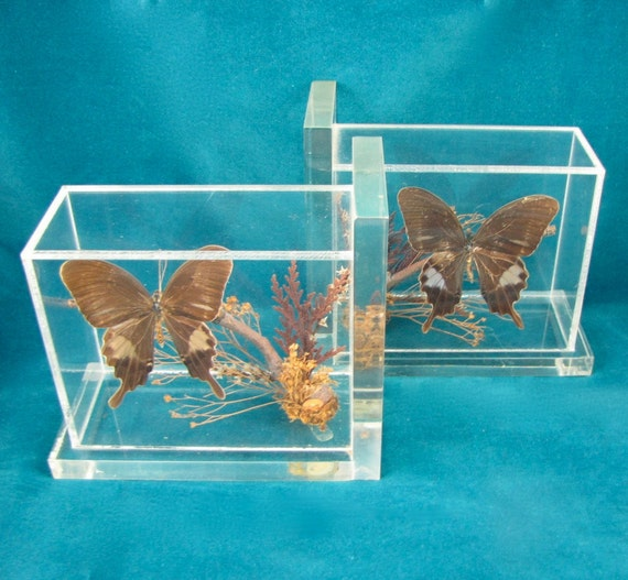 Fine Specimens - Vintage Butterfly Diorama Bookends, Real Butterflies Encased in Clear Lucite