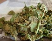 Garlic Spinach Chips