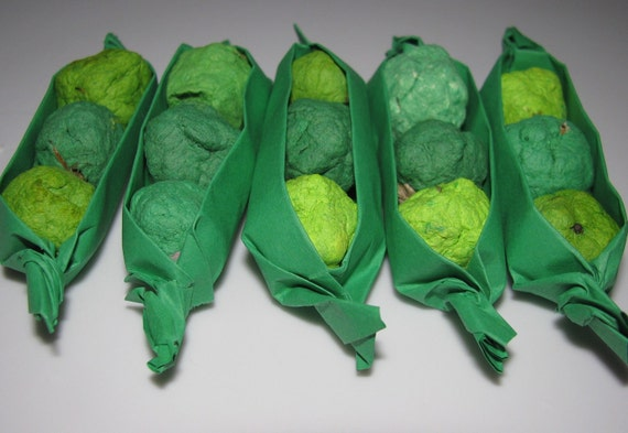 Baby Shower Favor  Green Seed Bomb Pea Pods