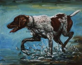 German Shorthaired Pointer 11x14 print