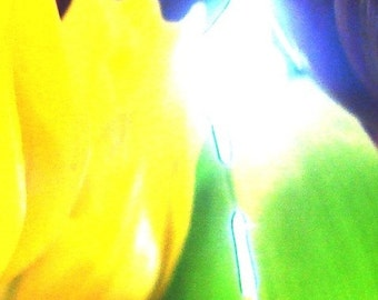 Abstracted Warhol Tulips