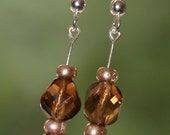 Gold and Brown Dangle Earrings