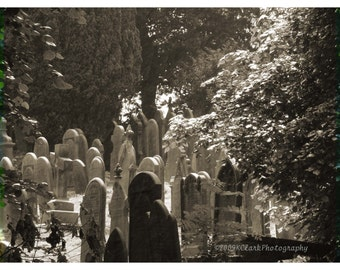 Photography black and white Cemetery Graveyard England scary haunted creepy Bronte Romantic Print