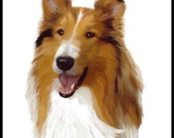 Collie - 10x10in portrait