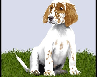 Orange Belton English Setter Puppy - 10x10in print