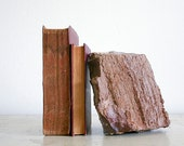 Vintage Petrified Wood Bookend