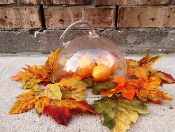 Vintage Glass Cloche Dome - Architectural Handle - Fall Echos - Effortless Decor