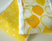 Yellow Burp Cloth set of 2 for a baby girl. Polka dots and fruit SALE
