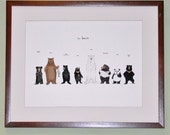 the bear family in colour print