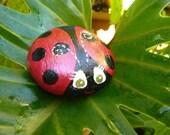 Little LadyBug Rock