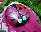 Blue-Eyed Ladybug Rock Friend