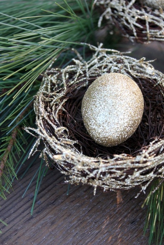Decorative Nest With Egg